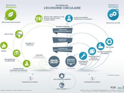 Un schéma pour mieux comprendre l'économie circulaire